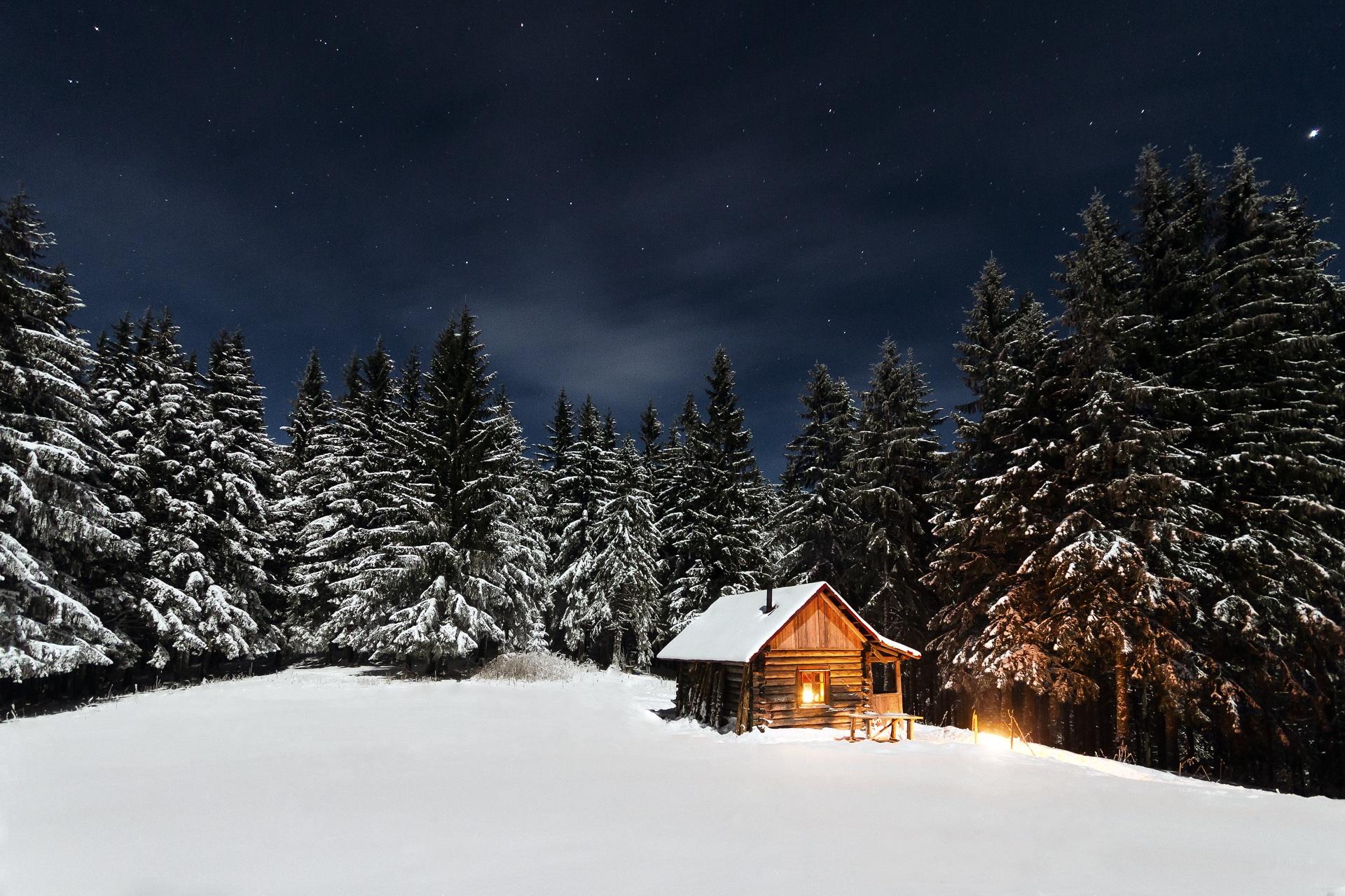 Cozy well lite log cabin in a snowy wood